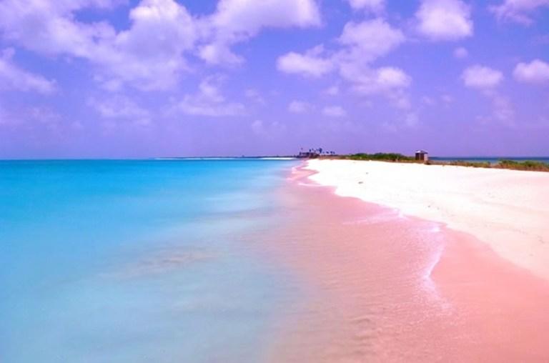 Pink-Beach-of-Harbor-Island-–-Bahamas